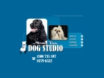 View More Information on About Town Dog Studio, Glenunga