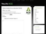 View More Information on Ace Tree Management