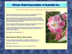 View More Information on African Violet Association Of Aust Inc