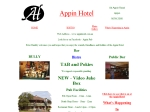 View More Information on Appin Hotel