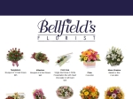 View More Information on Balloon Bouquets By Bellfield's