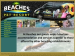 View More Information on Beaches Pet Boarding