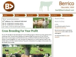 View More Information on Berrico Pty Ltd