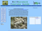 View More Information on Bird Observers Club Of Australia