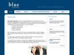 View More Information on Blue Group Marketing