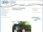 View More Information on Boylan Simpson & Simpson Corporate Psychology Services