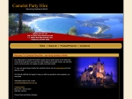 View More Information on Camelot Party Hire