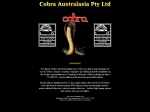 View More Information on Cobra Car Alarms