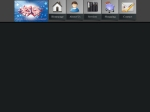 View More Information on Colonial Soft Computer Services