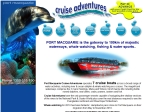 View More Information on Cruise Adventures
