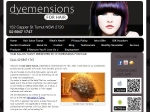 View More Information on Dyemensions For Hair