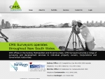 View More Information on CMS Surveyors