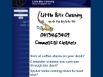 View More Information on Little Bits Cleaning