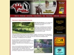 View More Information on Alpha Dog Training