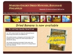 View More Information on Mareeba Golden Dried Mangoes