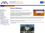 View More Information on Marzol Holloway & Associates