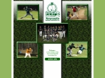 View More Information on Newcastle Baseball Asscn