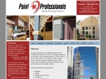 View More Information on The Paint Professionals