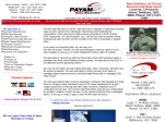 View More Information on PAYAM Data Recovery, Ryde