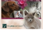 View More Information on The Pines Pet Resort