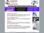 View More Information on Professional Plumbing