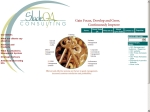 View More Information on Slade Q A Consulting
