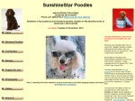 View More Information on Sunshinestar Poodles