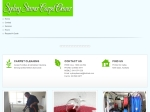 View More Information on Sydney Steemer Carpet Cleaner