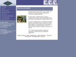 View More Information on The Engineering Company Pty Ltd, Somerset