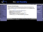 View More Information on The Net Foundry