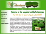 View More Information on The Wheatgrass Man