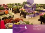 View More Information on Tony's & Penfield's Wholesale Flowers