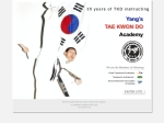 View More Information on Young's Tae-Kwon-Do Academy