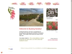 View More Information on Bywong Nursery