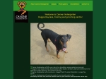 View More Information on canine kindergarten