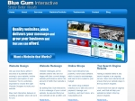 View More Information on Blue Gum Interactive