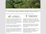 View More Information on Arboreal Tree Care