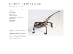 View More Information on Steel The Show