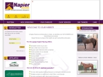 View More Information on Napier Racing