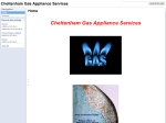 View More Information on Cheltenham Gas Services
