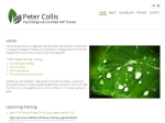 View More Information on Peter Collis - Counselling Psychologist