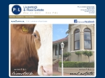 View More Information on P & L Livestock & Real Estate