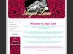 View More Information on Angel Lane