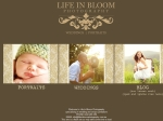 View More Information on Life in Bloom Photography