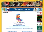 View More Information on Clever Birds