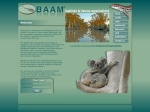 View More Information on BAAM Pty Ltd