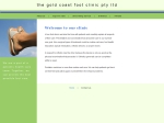 View More Information on Gold Coast Foot Clinic