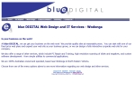 View More Information on Blue Digital Web Design