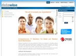 View More Information on Datawise Consulting