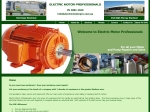 View More Information on Electric Motor Professionals